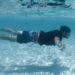GoPro underwater shot of Knight On Trip