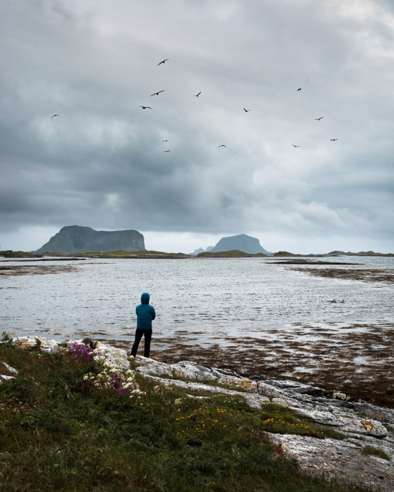 Birds watching spot on Rost Island in Lofoten Islands