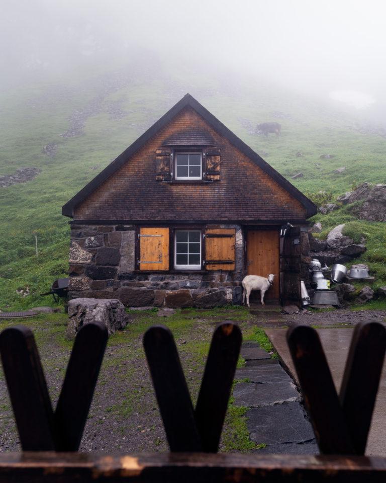 Mesmer view in Alpstein